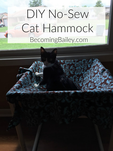 DIY No-Sew Cat Hammock