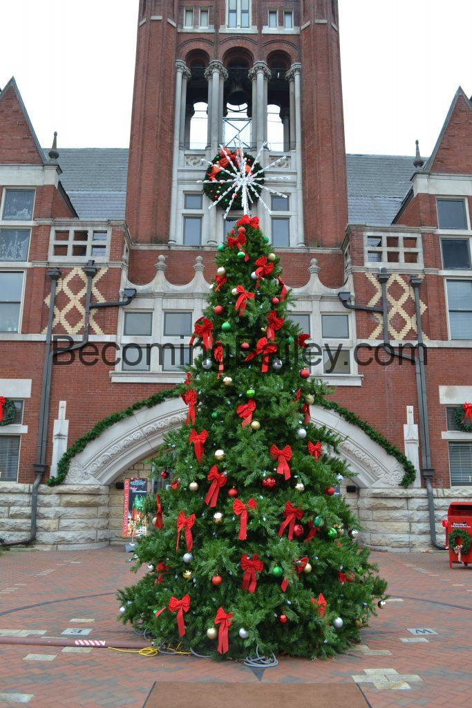 Christmas Tree on the Court Square Bardstown KY