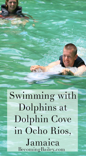 Swimming with Dolphins | Ocho Rios, Jamaica | If you haven't been swimming with dolphins, you need to put it on your bucket list!