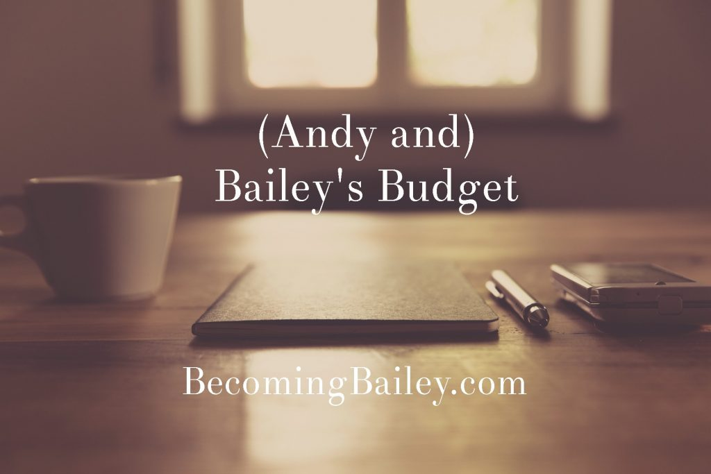 Becoming Bailey monthly budget