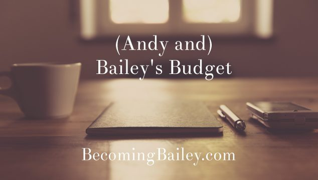 (Andy and) Bailey's Budget {November 2016}