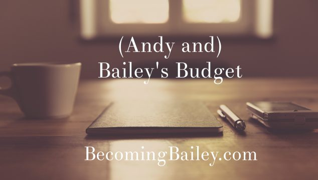 (Andy and) Bailey's Budget {December 2016}