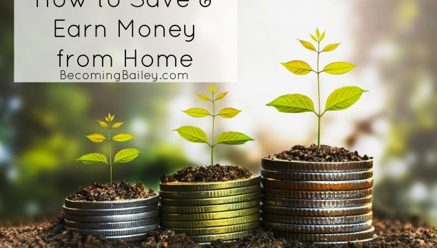 How I Save & Earn Money from Home