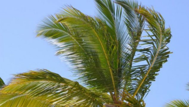 Why Our Trip to Juanillo Beach in the Dominican Republic Was Disappointing…